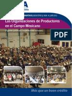 Las Organizaciones de Productores
