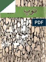 توپ / غلامحسین ساعدی