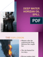 2006 Deep Water Horizon Oil Spill