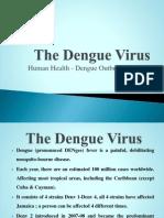 Dengue Outbreak Jamaica 2007-08