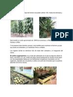 PUNTOS FALTANTES DEL PROYECTO DE TESIS MISION SUCRE.docx