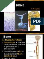 Bone-06.11