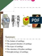 cartilagebloodcir