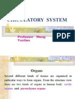 circulatory system-MENG