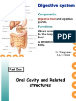 digestive tract courseware2