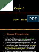 nervous tissue-06.11-2wl