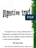 9.digsetive tract
