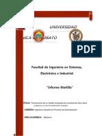Informe Martillo