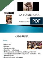 DIAPOSITIVAS HAMBRUNA