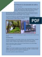 Istoria Satului Puhaceni in Documentele de Arhiva