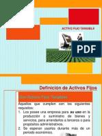 Presentacion Activo Fijo Tangible