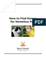 How to Find Homes for Pets