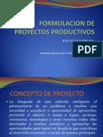 Formulacion de Proyectos Productivos