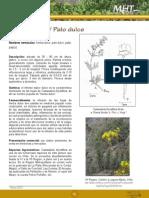 Hierba Palo Dulce