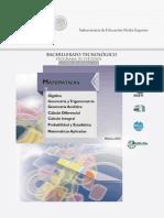Matemticas Acuerdo 653 2013-2