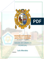 Salida de Pedregal -Informe Final