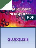 Metabolismo Energético I