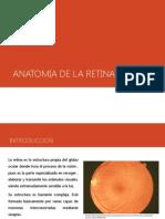 Anatomia de La Retina