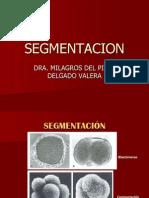 213337858 Disco Germinativo Bilaminar y Trilaminar