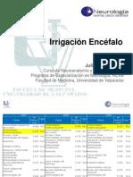 Irrigacion Encefalo (2.0).pdf
