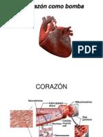 contractilidad cardiaca