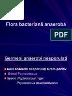 8MD- Flora Bacteriană Anaeroba Finalizat