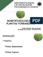 morfofisiologia (apresentação).pptx