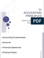 01 Accounting Principles