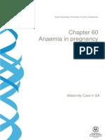 SA Anemia Pregnancy