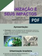 Urbanização e Seus Impactos