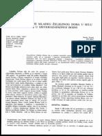 OA20_Raunig.pdf