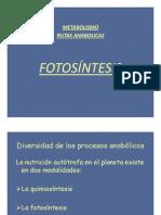 Fotosintesis Bio