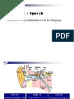 05 Speech Perception