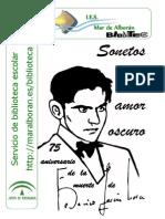 Sonetos Amor Oscuro-Federico García Lorca