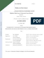 manuscrit_these_IBRAHIM.pdf