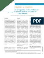 vagancia de postlarvas tehuantepec.pdf