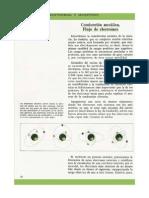 Ficha - Electricidad y Magnetismo - (24)