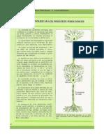 Ficha - Electricidad y Magnetismo - (30)