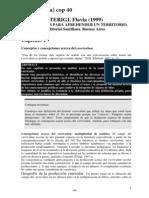 01 056 088 Terigi Curriculum Cap. I,II