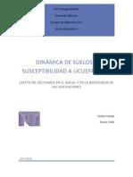 36622908 Dinamica de Suelos y Susceptibilidad a Licuefaccion