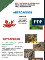 ARTROPODOS 1
