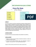5_por_qués