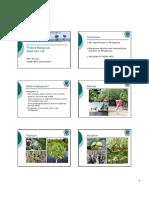 Protect Mangrove
