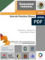 GPC - Fiebre Tifoidea