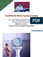 Insuficiencia Renal Aguda y Cronica Curso Medicos Generales