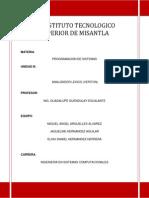 Manual Veriton