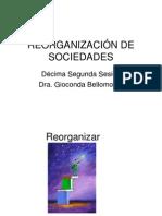 Sesión Reorganización de Sociedades