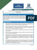 Ficha Metodologicacngmd 2013