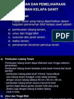 Pemeliharaan Kelapa Sawit1 (TPT II)