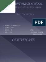 mathspolyppt-130829154410-phpapp01